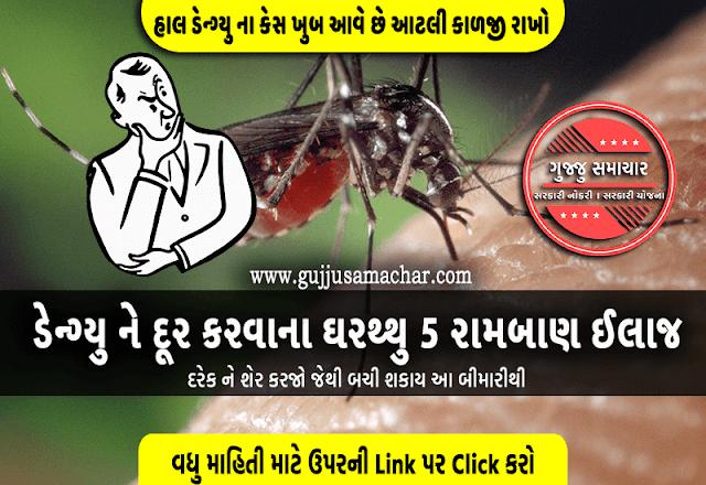 Dengue Fever : ડેન્ગ્યુ ને દૂર કરવાના ઘરથ્થુ 5 રામબાણ ઈલાજ