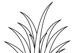Paling Populer Gambar  Rumput  Untuk  Mewarnai Gambar