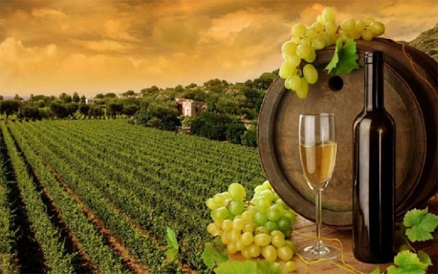 Το κρασί, οι ευχές, και το τσούγκρισμα των ποτηριών...