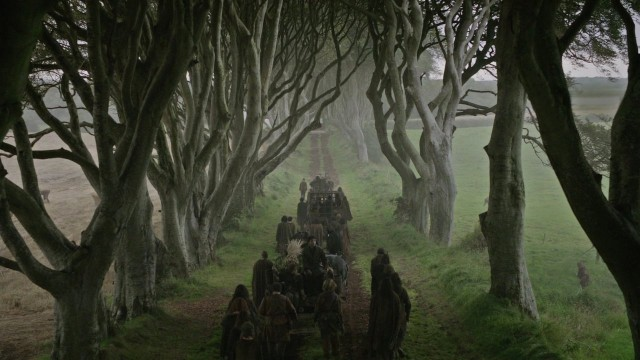 the-dark-hedges-game-of-thrones-tour-poracci-in-viaggio