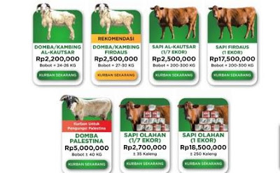 harga hewan qurban online baznas
