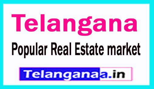 Telangana is the Second Most Popular Real Estate market in India