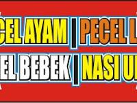 Download Contoh Spanduk Pecel Ayam Format CDR