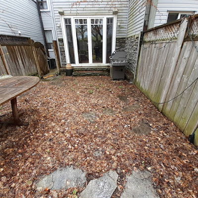 Toronto Riverdale Back Garden Spring Cleanup Before by Paul Jung Gardening Services--a Toronto Organic Gardener