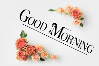 Good Morning Royal Images Download for Whatsapp Facebook14