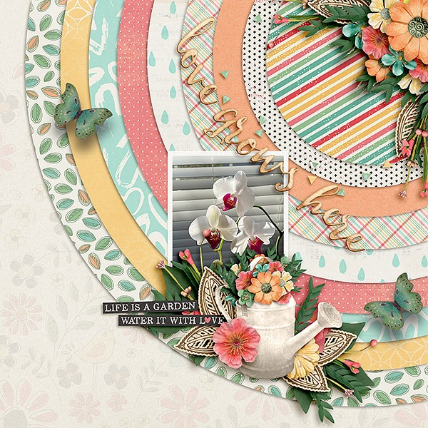 Shape Up digital scrapbooking templates