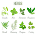A few select herbs can keep you healthy.
