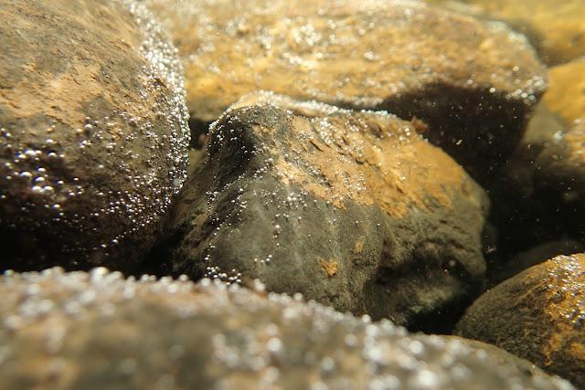 Kiviä veden alla. Kivien pinnalla paljon pieniä kuplia.