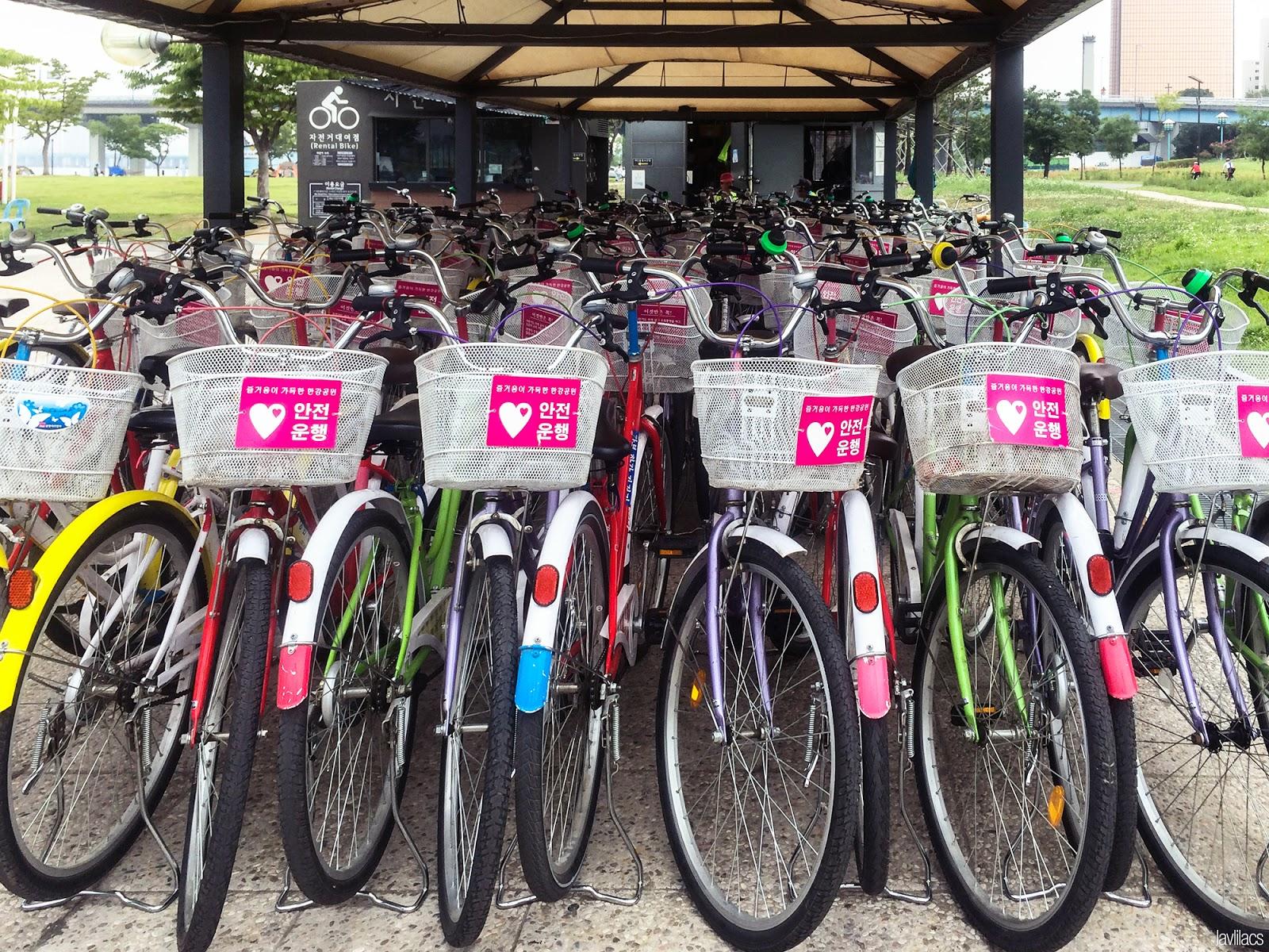 Seoul, Korea - Summer Study Abroad 2014 - Yeouido Park - Han River - bike rental station