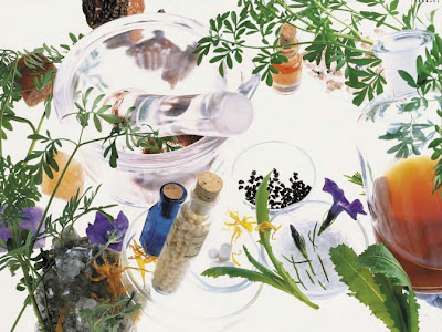 Medicamentos Materia Medica Homeopatica Vijnovsky