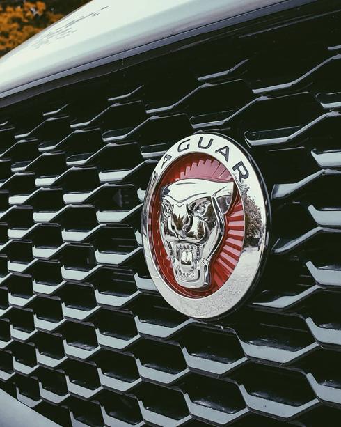 Vancouver Jaguar