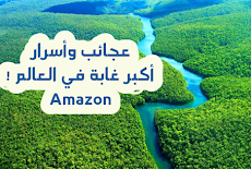 أكبر غابات في العالم!!