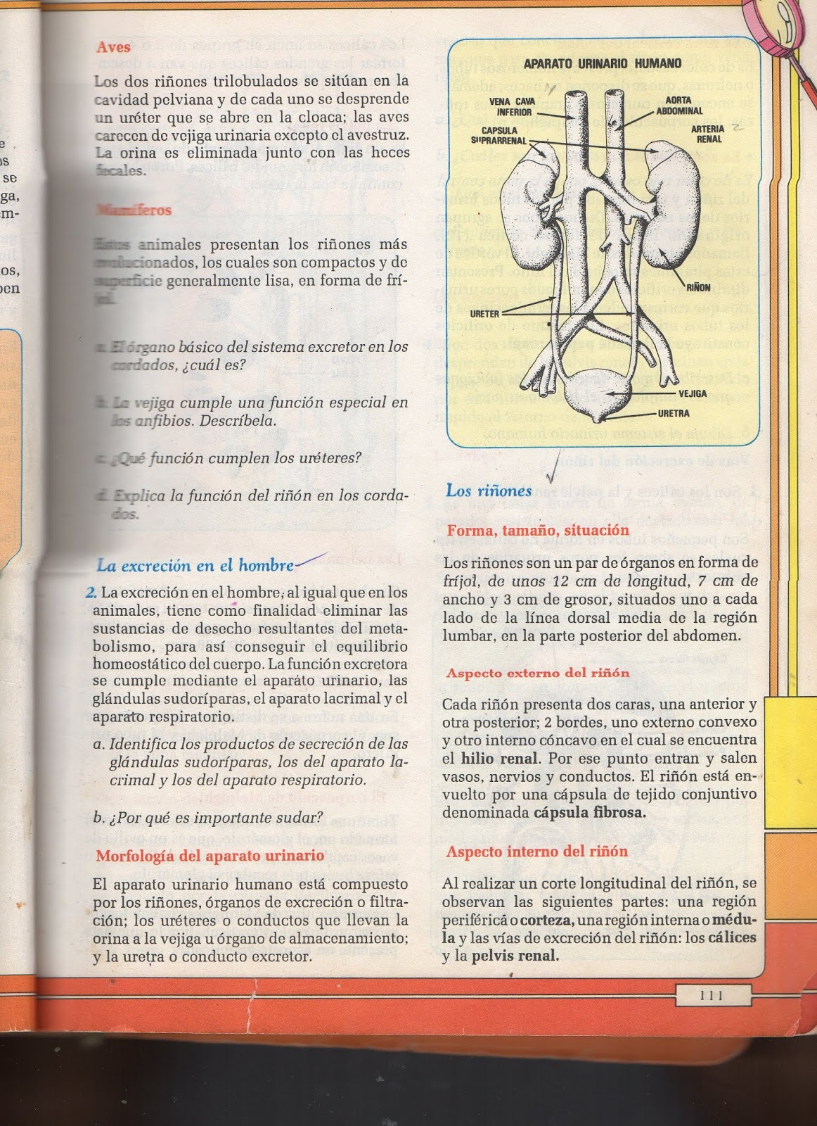 NOVA ESTRELLA 3: BIOLOGÍA 8 1P