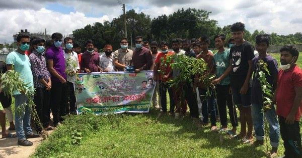 Chhatra League planted trees at Sherpur Chapatli cemetery