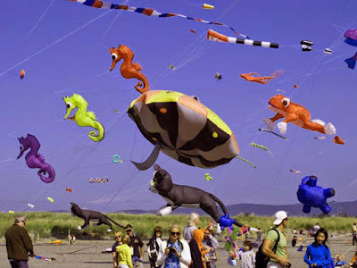 International-Kite-Festival-New-york-Washigton