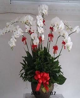 Rangkaian Bunga Imlek