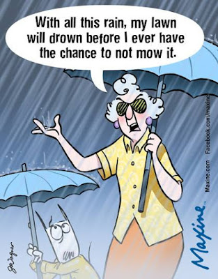 Maxine cartoons  lawn rain