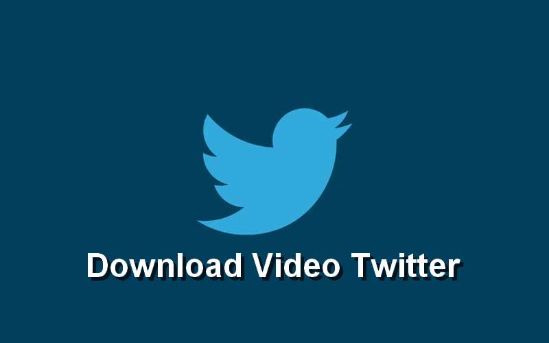 Cara Download Video Twitter di Android dan iPhone (twitter.com)