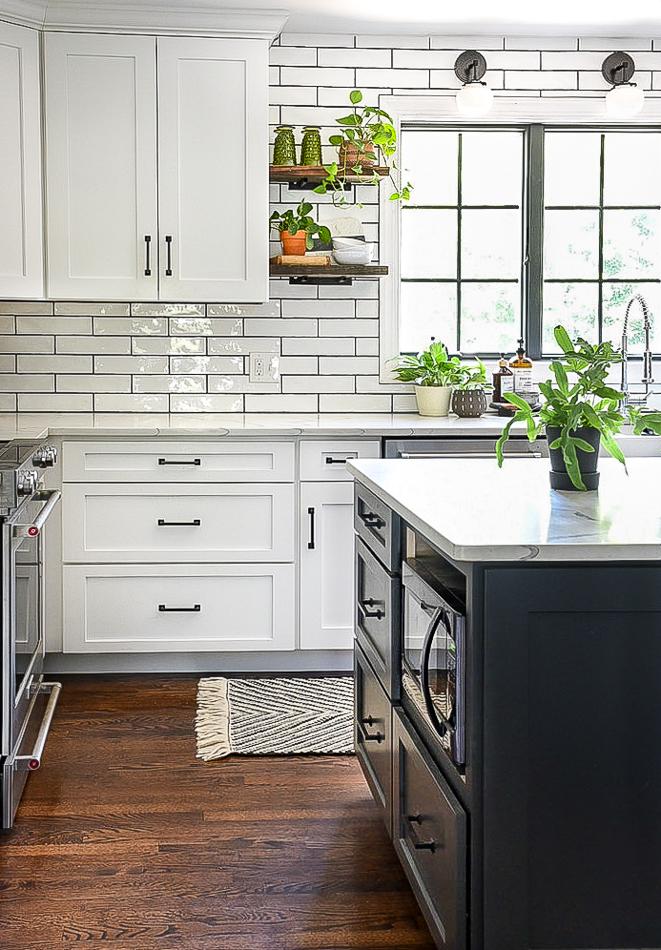 Green plants in kitchen