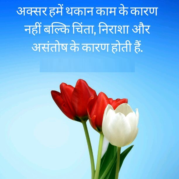 hindi shayari love shayari images sad shayari wallpapers