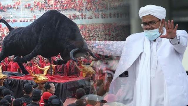 Mengapa Orang PDIP Ramai-ramai Menyerang Habib?
