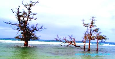 Pesona Pantai Lhok Mee Destinasi Aceh