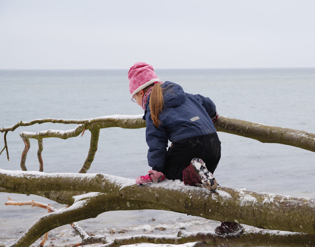 Der Abenteuer-Strand: Rau, steinig, spannend. Bei dieser Art von Strand wartet hinter jeder Küsten-Krümmung ein Abenteuer. Klettern über umgestürzte Bäume gehört dazu!