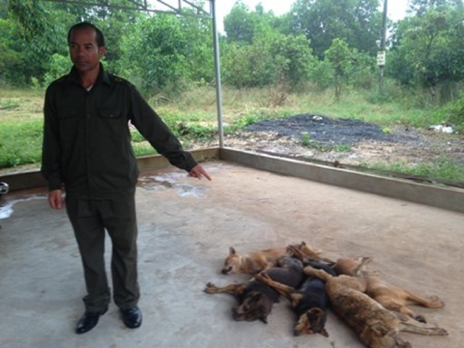 Gia Lai: Kẻ trộm chó bị dân làng vây đánh ngất xỉu