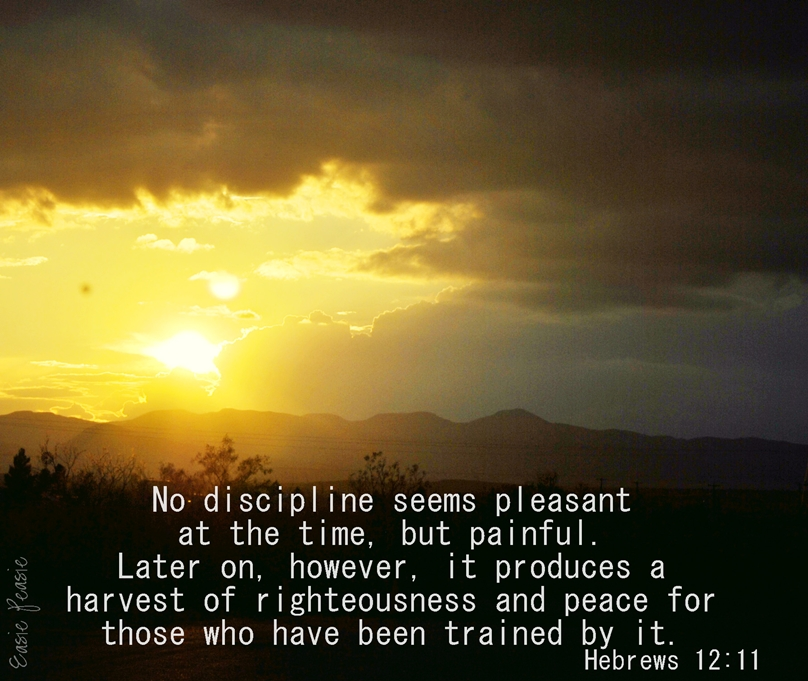 Inspirational Quotes Motivation: Discipline Bible Quotes. QuotesGram