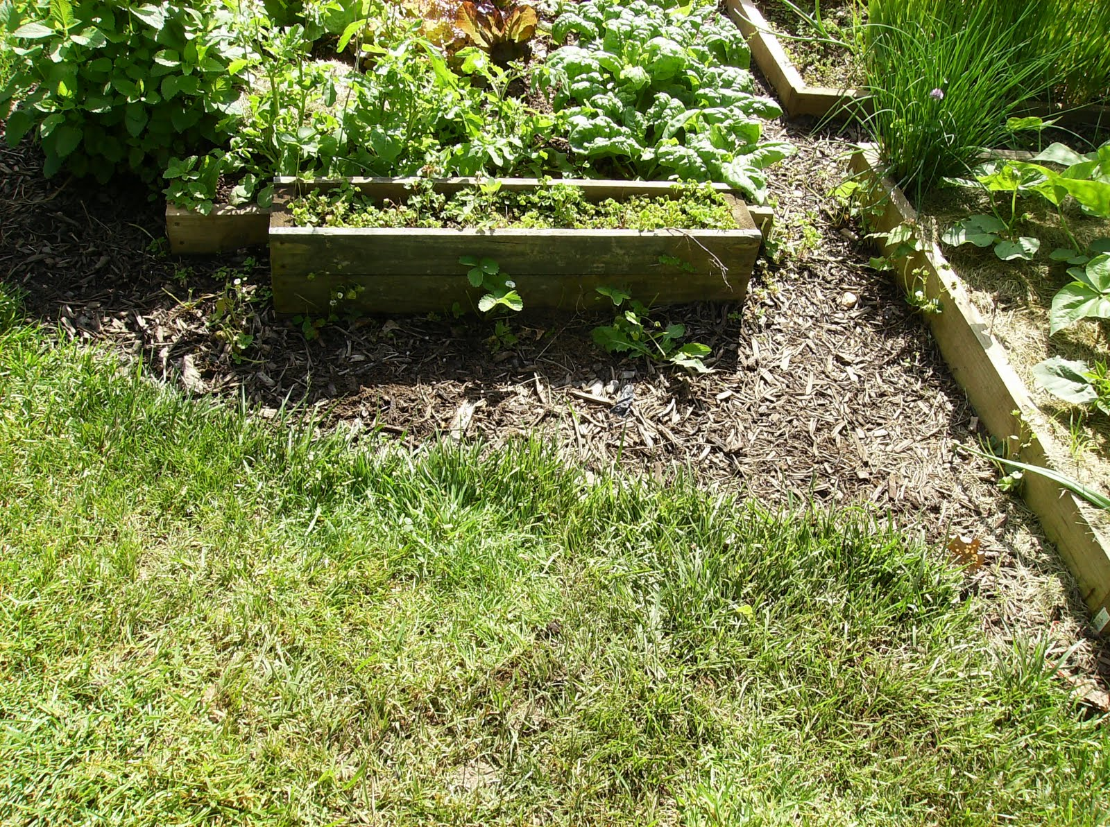 The Empty Space To Become A Sunken Container Garden.