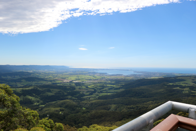 Alphabet Dating Letter O Outdoor Adventure - Illawarra Fly Treetop Walk Review