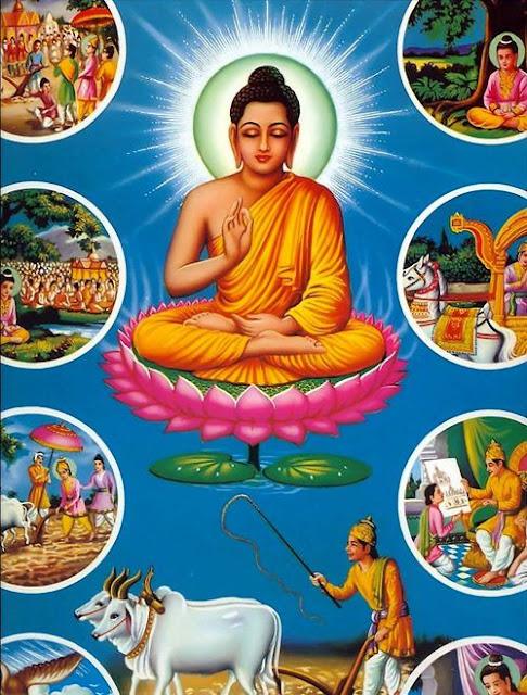 [31] Nghiệp chuyển lên và Nghiệp chuyển xuống - ĐỨC PHẬT và PHẬT PHÁP - Đạo Phật Nguyên Thủy (Đạo Bụt Nguyên Thủy)