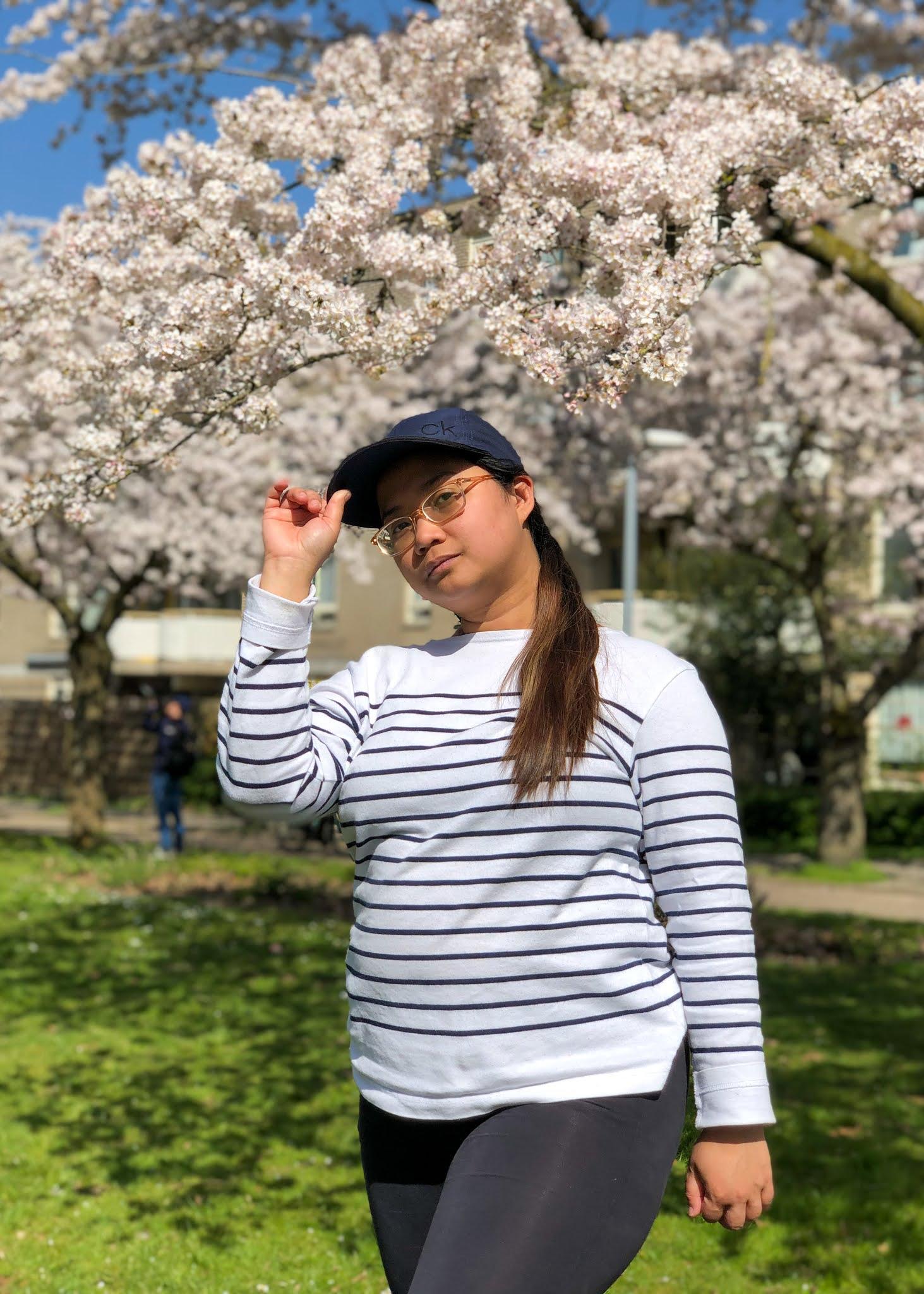 Be Carol Sakura Cherry Blossoms Netherlands