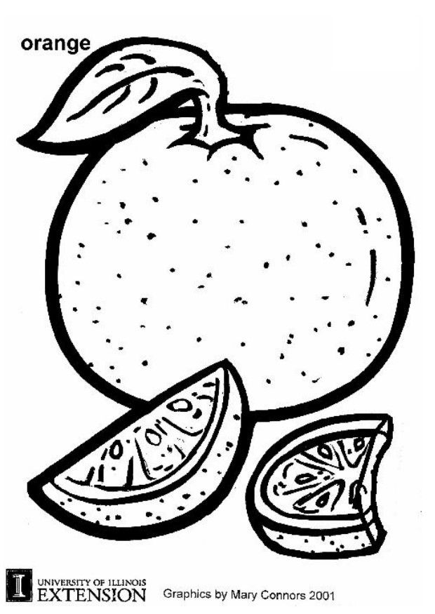 13 fruit orange coloring books for education for Orange coloring page