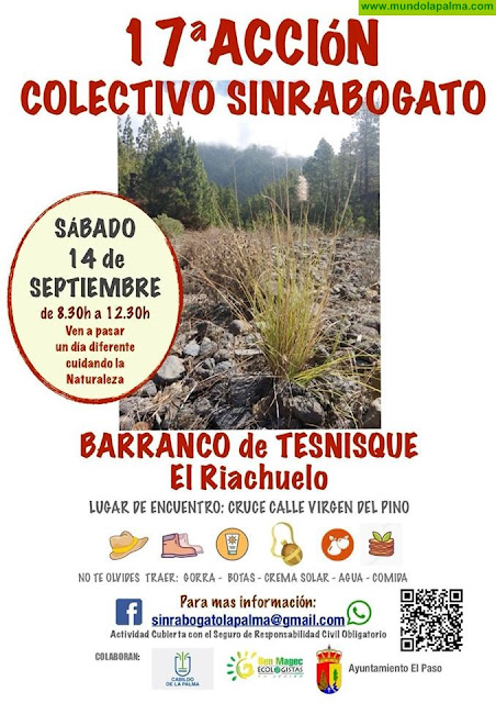 Proxima acción Sinrabogato La Palma