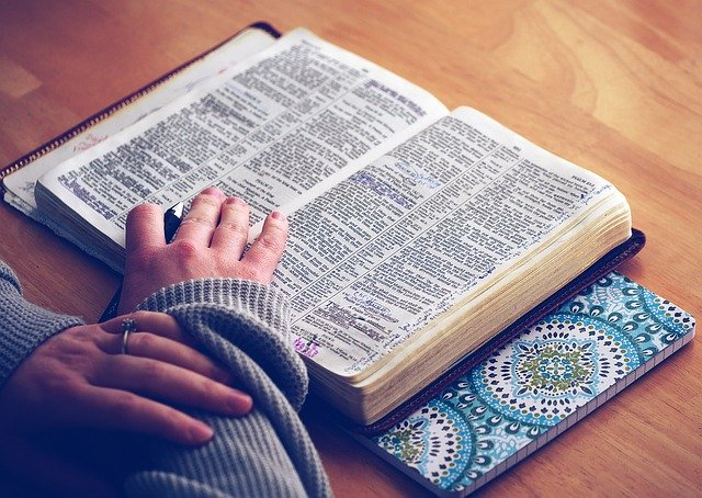 tangan imut yang sedang membuka sebuah kamus