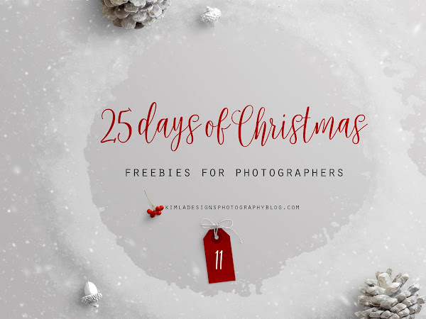 25 Days of Christmas Freebies for Photographers Day 11th