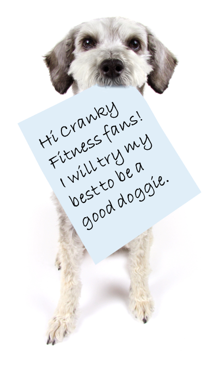 Cranky Fitness 23andme Genetic Testing What S The Deal: Cranky Fitness: Teaching A New Dog Old Tricks