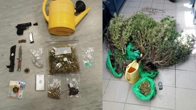 Ίλιον: Καλλιεργούσε κάνναβη στην ταράτσα του σπιτιού του