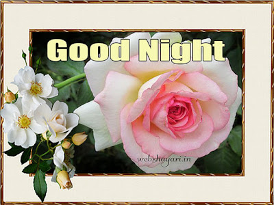 gulab good night