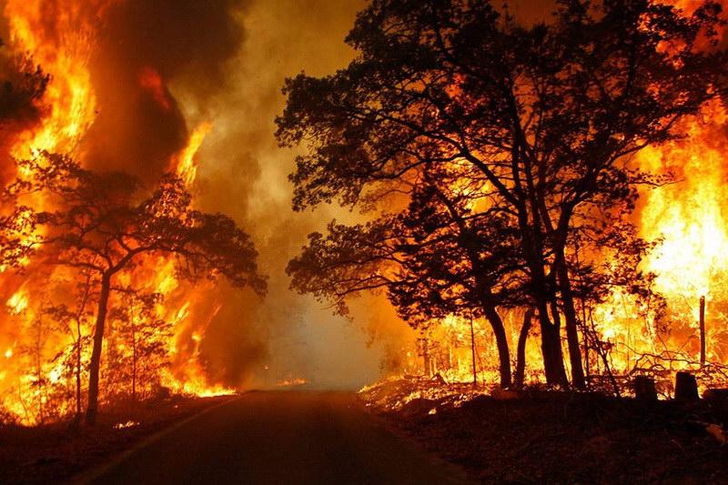 Πόσο ασφαλείς μπορεί να είμαστε έναντι του κινδύνου των δασικών πυρκαγιών;