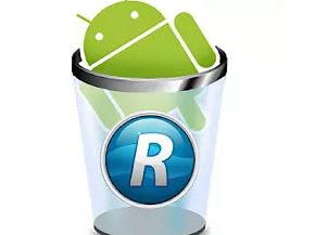 Revo Uninstaller Mobile Pro v2.1.210 APK