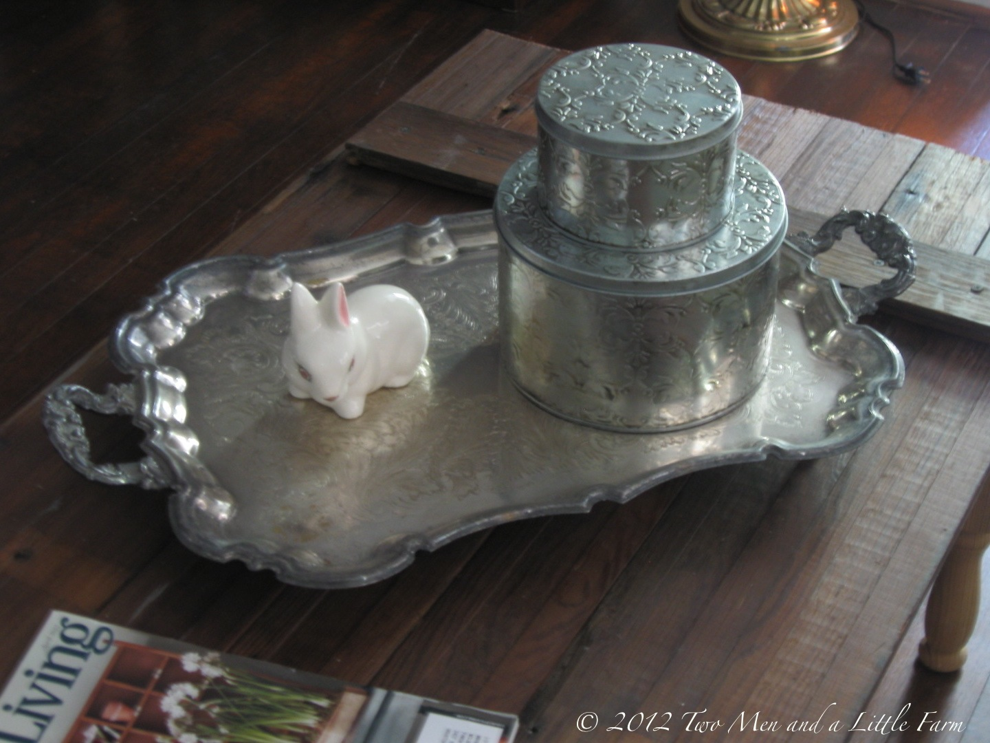 The Silver Coffee Table Tray
