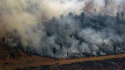 Bolsonaro proíbe queimadas no Brasil por 60 dias
