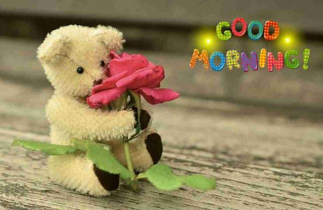 beautiful good morning image of a cute teddy