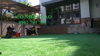 cỏ nhân tạo sân vườn giá rẻ