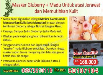 obat gluberry dari herbal untuk membuat rambut bercahaya & sehat, harga gluberry herbal untuk melembabkan kulit, harga gluberry terbuat dari herbal dan murah, harga gluberry terbuat dari herbal untuk menghilangkan keritan