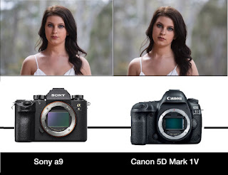 مقارنة بين canon و sony - مقارنة بين كانون و سوني  - tarek4tech