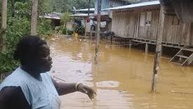 Desbordamiento de dos ríos en Bojayá deja 60 viviendas afectadas y 76 familias damnificadas.