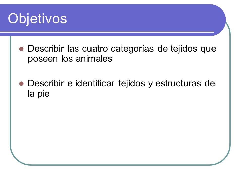 TEMA 1 DE ANATOMÍA Y FISIOLOGÍA ANIMAL | PROF. EDIXON MEDINA ...